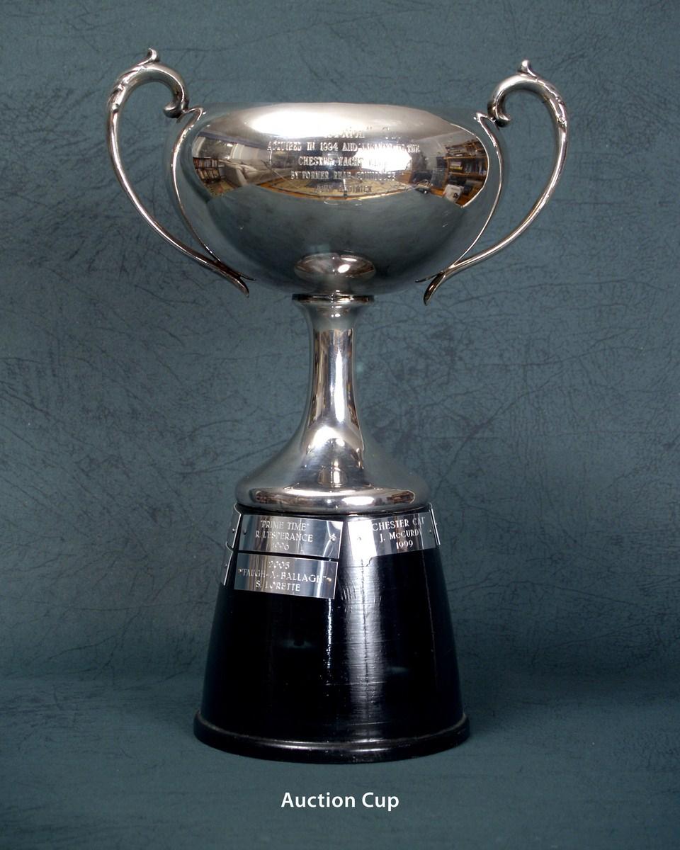 Auction Cup