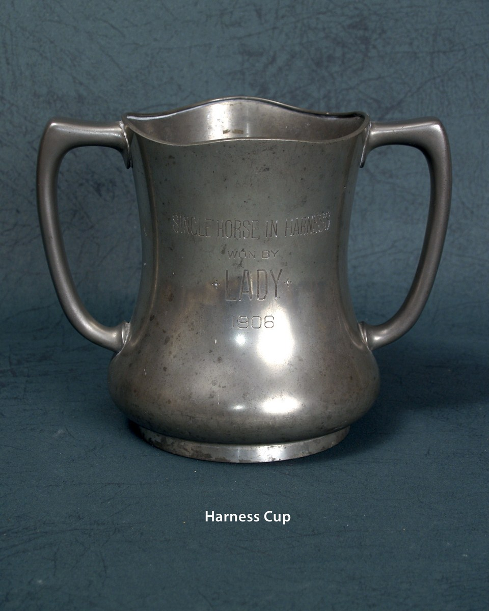 Harness Cup